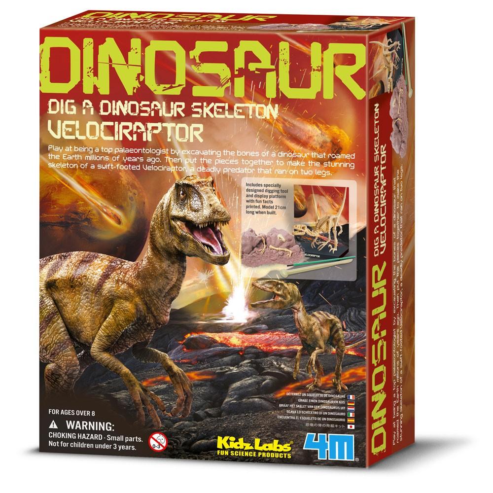 4M Kidzlab - Dinosaurier Ausgrabung Velociraptor