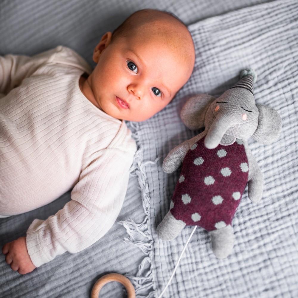 Ava & Yves - Spieluhr Elefant mit Hütchen